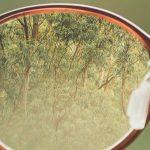 Prevé los problemas visuales : la importancia del control de la miopía en los niños , hipermetropía, presbicia, astigmatismo... consejos de prevención de los profesionales.