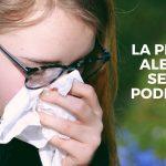 La Primavera y sus alergias ¡Trucos sencillos para poder mantenerla a punto!